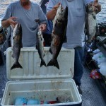 Summer_Chinook_Salmon_Hurds_Guide_Service_31