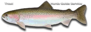 Trout Fishing - Hurds Guide Service