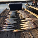 Banks_Lake_Walleye_Hurds_Guide_Service_11
