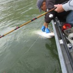 Sturgeon_Fishing_Hurds_Guide_Service_01