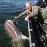 Sturgeon_Fishing_Hurds_Guide_Service_16