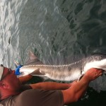 Sturgeon_Fishing_Hurds_Guide_Service_61