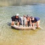 Sturgeon_Fishing_Hurds_Guide_Service_63