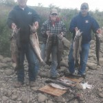 Fall_Chinook_Salmon_Hurds_Guide_Service_56