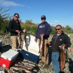 Fall_Chinook_Salmon_Hurds_Guide_Service_66