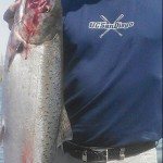 Spring_Chinook_Salmon_Hurds_Guide_Service_21