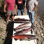 CHINOOK SALMON GUIDE SERVICE