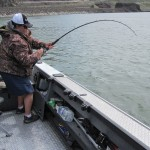 4/06/2016 Sturgeon fishing on the upper Columbia river 005
