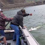 4/06/2016 Sturgeon fishing on the upper Columbia river 007